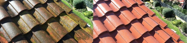 Tile Roof Restoration Services in San Diego