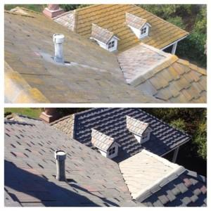 Here's-How-To-Get-Rid-of-Your-Roof-Moss-Today-300x300