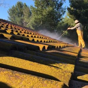 Roof Power washing and cleaning in Laguna Niguel, CA